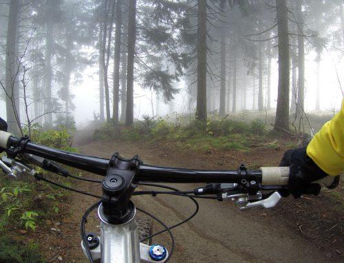 Cykloturistické trasy